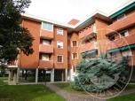 Immagine di Appartamento ed autorimessa condominiale - con oneri - parzialmente locato a terzi con contratti non opponibili.
