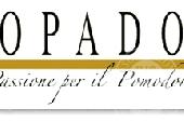 CESSIONE DEL COMPENDIO AZIENDALE 'CO.PA.DOR Soc. Agr. Coop.'
